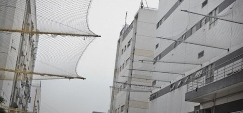Foxconn suicide nets