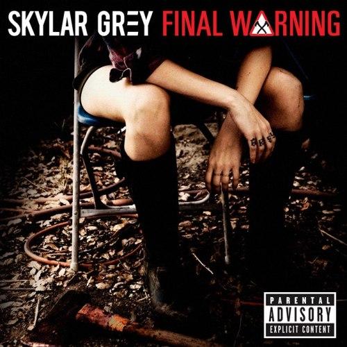 Skylar Grey Final Warning
