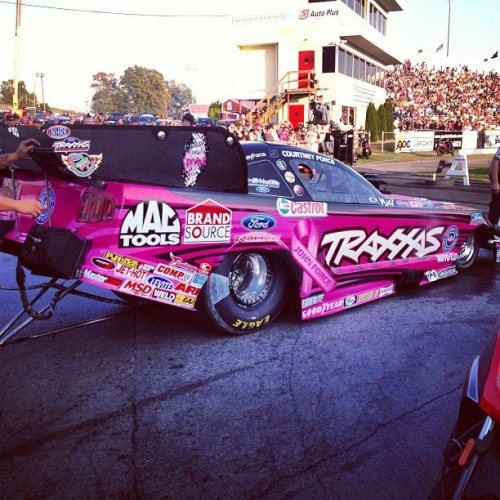 Courtney Force Pink Car